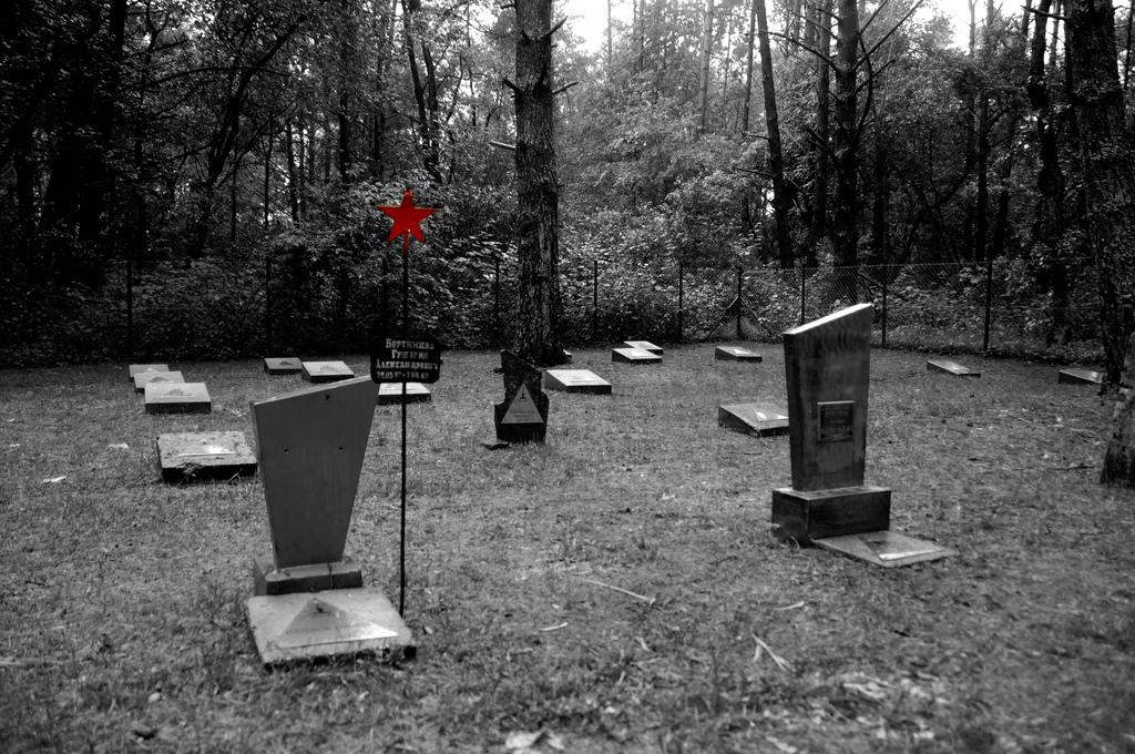 """Cmentarz z ,,pepeszą"""""""